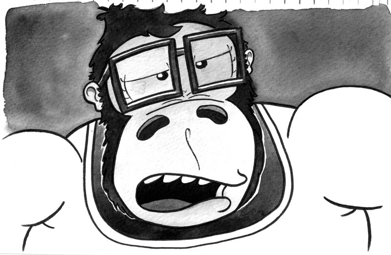 04 gorilla teacher